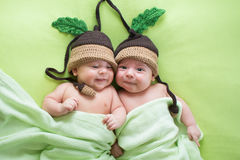 Twins brothers babies weared in acorn hats stock photo