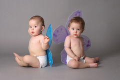 Twins with butterfly wings. Studio shot stock images