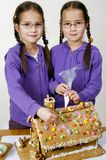 Twins decorating Royalty Free Stock Photos