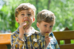 Twins eating ice cream. Three year old identical twins eating ice cream in the park. The children are dressed differently Royalty Free Stock Images