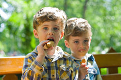 Twins eating ice cream. Three year old identical twins eating ice cream in the park. The children are dressed differently Royalty Free Stock Photo