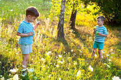 Twins in the flower meadow Royalty Free Stock Photo