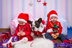 Twins with french bulldog in santa helper costumes Stock Photo