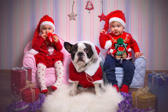 Twins with french bulldog in santa helper costumes Royalty Free Stock Photos