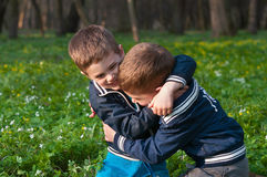 Twins frolic in a meadow. Four year old twin boys indulge in cuddling on the meadow Stock Photos