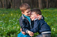Twins frolic in a meadow. Four year old twin boys indulge in cuddling on the meadow Stock Photography