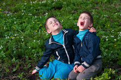 Twins frolic in a meadow. Four year old twin boys frolic on the meadow Royalty Free Stock Image