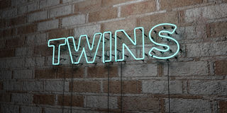 TWINS - Glowing Neon Sign on stonework wall - 3D rendered royalty free stock illustration Stock Photography