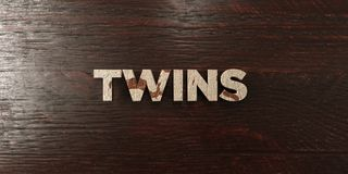 Twins - grungy wooden headline on Maple  - 3D rendered royalty free stock image Stock Photo