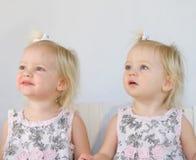 Twins Having Fun. Twins Smiling Having Fun Playing Royalty Free Stock Images