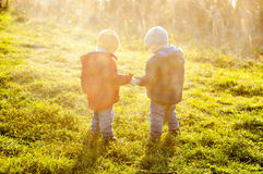 Twins held hands. Identical twins held hands. They dressed in-between-season garment different colors. They are standing in the meadow with back lighting. Their Royalty Free Stock Photography