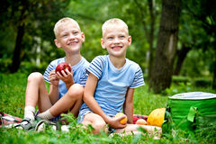 Twins holding fruits Royalty Free Stock Image