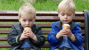 Twins with ice cream in park. Daytime stock video footage