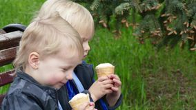 Twins with ice cream in park stock video