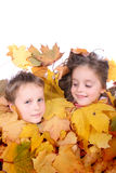 Twins in the leaves Stock Photos