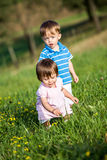 Twins on the meadow Stock Image