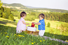 Twins on the meadow Stock Photography