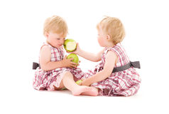 Twins Royalty Free Stock Photo