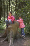 Twins playing on a tree stump. Girls playing on a tree stump with a seet in it Royalty Free Stock Image
