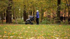 Twins in a pram. Mom carries. Woman with a stroller twins at the autumn park.  stock video