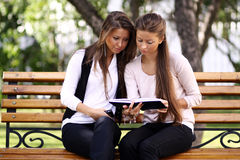 Twins of sister readink book Royalty Free Stock Image
