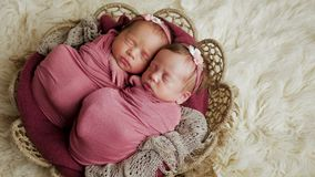 Twins sisters newborn in the winding and in a basket. On white fur background stock photo