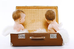 Twins sitting in a suitcase having fun. Play, travel, family - concept Royalty Free Stock Photo