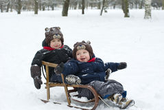Twins in the sled Royalty Free Stock Photo