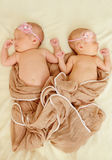 Twins are sleeping Royalty Free Stock Image