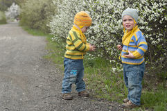Twins with the stons. Identical twins stand on the gravel road near the blossoming shrubs. Season - spring. Boys dressed in the same stripy jumper and hats in Royalty Free Stock Photos