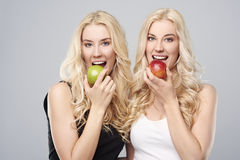 Twins in studio Royalty Free Stock Photo
