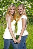 Twins in the summer Stock Photography