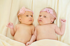 Twins Stock Photography
