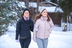 Twins walking in countryside. Royalty Free Stock Image