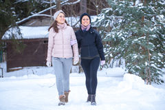 Twins walking in countryside. Stock Images