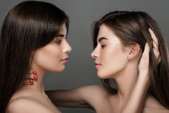 Twins women with perfect skin and natural make-up. Portrait of beautiful twins women with perfect skin and natural make-up and long hair. fashion Stock Image