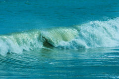 The twirled sea wave Royalty Free Stock Photos