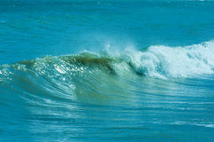 The twirled sea wave Stock Image
