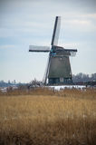 Twiske windmill in winter time Stock Images
