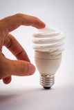 Twist light bulb on white background Stock Photography