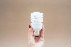 Twist and spiral LED light bulb in hand. With brown background Royalty Free Stock Images