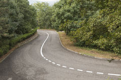 Twisted asphalted road with a dividing line Royalty Free Stock Photography