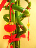 Twisted Bamboo with Miniature Lantern. A miniature red lantern hanging on a twisted lucky bamboo stock photo