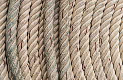 Twisted beige rope natural fiber background marine vertical lines Stock Photography
