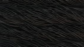 Twisted black cables and wires on black surface. Computer or telephone network. 3D rendering illustration Stock Photography