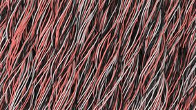 Twisted black, white and red cables and wires on black surface. Computer or telephone network. 3D rendering illustration Royalty Free Stock Photography