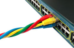 Twisted Ethernet Network Cables Connected to Hub Stock Images