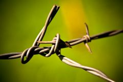Twisted fence wire Royalty Free Stock Images