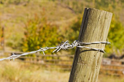 Twisted galvanized fence barb wire on weathered post Stock Photo