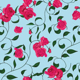 Twisted garden roses seamless vector pattern Stock Photo